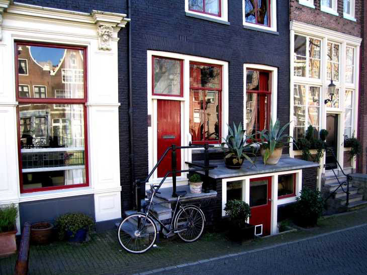 House front with bicycle and cacti in Amsterdam