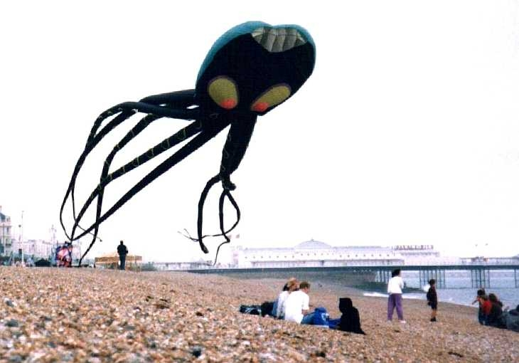Octopus balloon, on the beach at Brighton