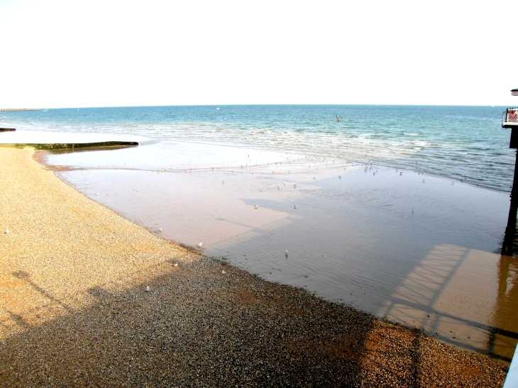 Shingle beach at low tide, Brighton, Sussex