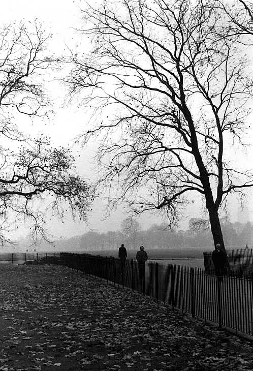 Winter morning, Hyde Park, London. Black & white photograph