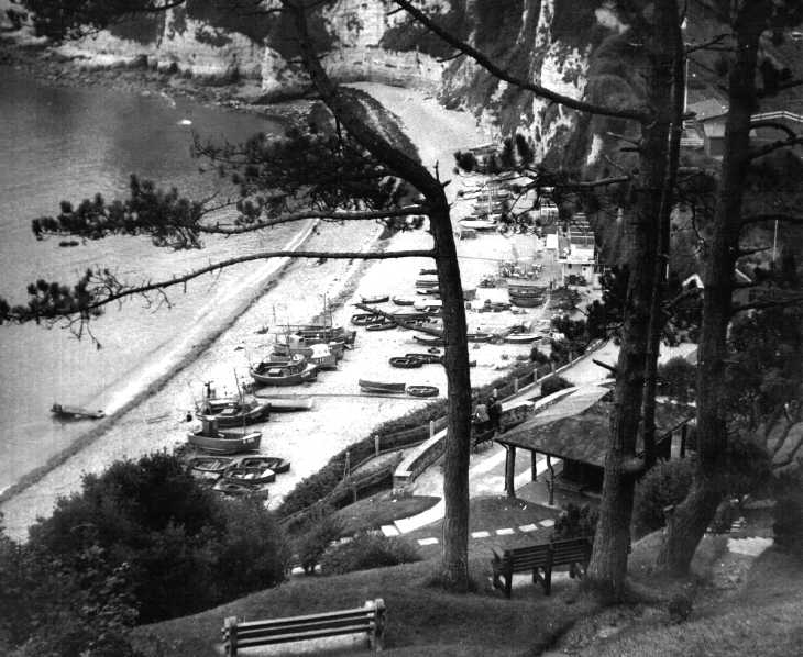 Beach, boats, and trees, Devon. Black & white photograph