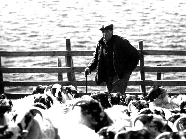 Farmer. The Hebrides Islands, Scotland