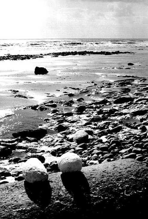 Stones on the beach at Birling Gap, Sussex