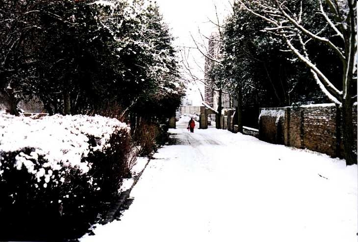 Rosemary Gardens in snow, Islington, London