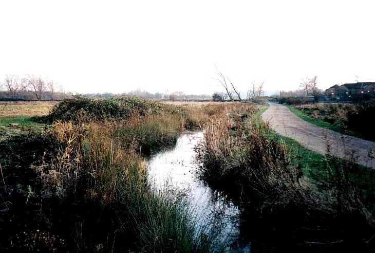 Walthamstow Marshes, East London