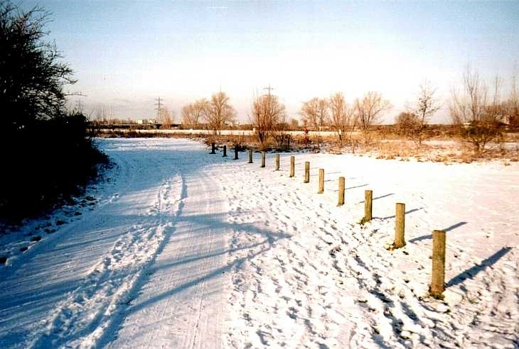 Snow at Walthamstow Marshes, East London