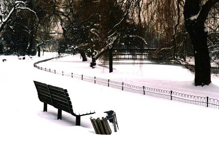 Bench and snow, Regent's Park, London