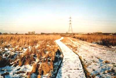 London, Lea Valley, Walthamstow Marshes in snow