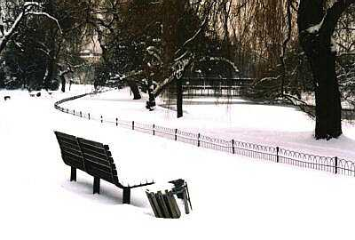 Bench, London, Regent's Park in snow