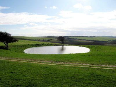 Dew pond and trees on the South Downs